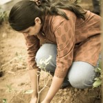 Plant a Tree for World Environment Day